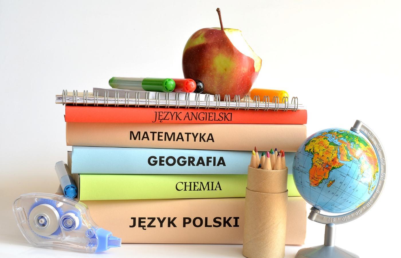 6 pytań o podręczniki szkolne. Gdzie kupić, gdzie sprzedać i kto je  wybiera? - Polityka.pl