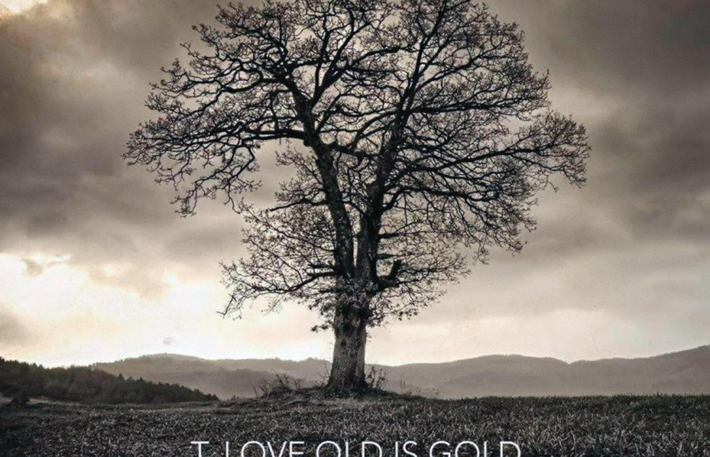 "T. Love, ""Old Is Gold"", EMI."