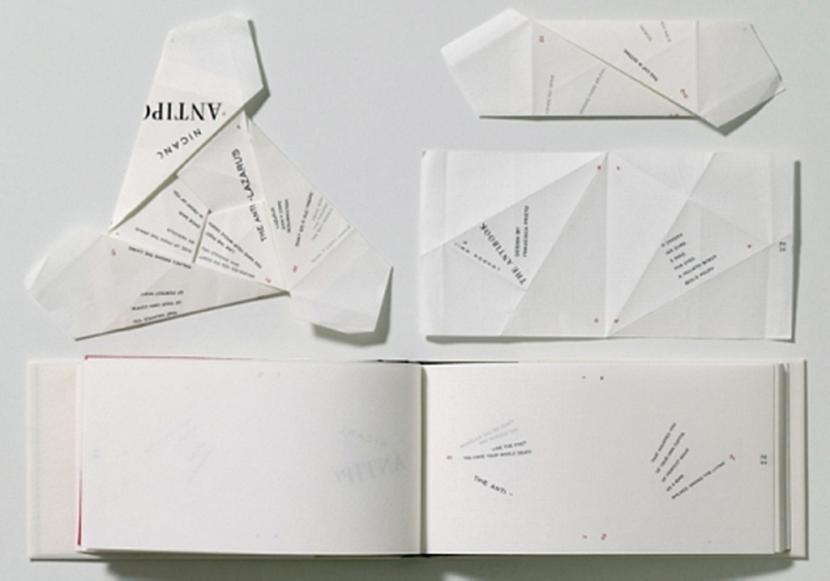 Chilijska artystka, Francisca Prieto, stworzyła książkę, która służy owszem do czytania, ale poezja (a właściwie antypoezja) w niej zawarta nabiera sensu jedynie po odpowiednim złożeniu kartek w bryłę dwudziestosześcianu.