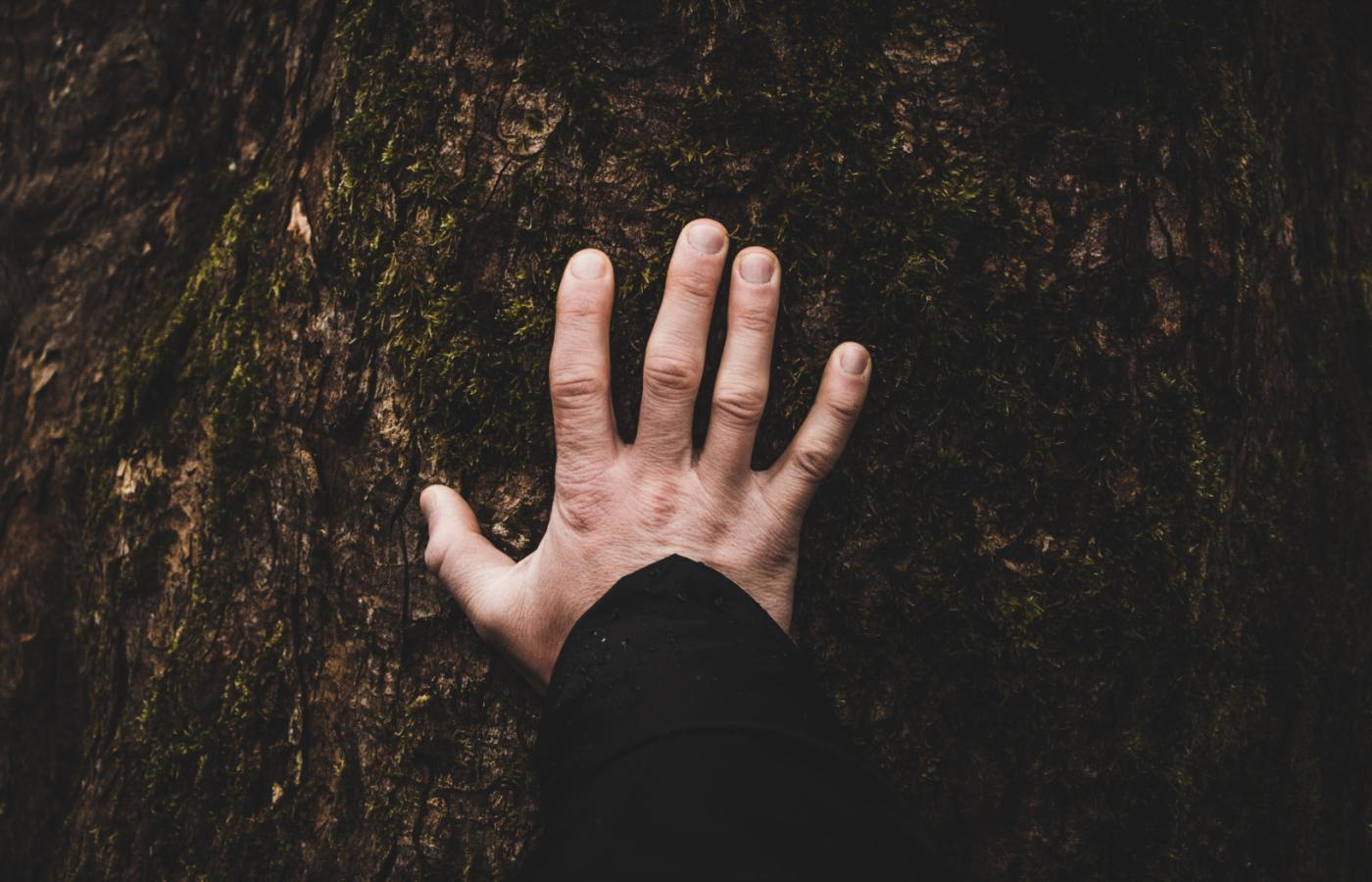 darmowy portal dla osób niesłyszących w Kanadzie 101 pytań randkowych