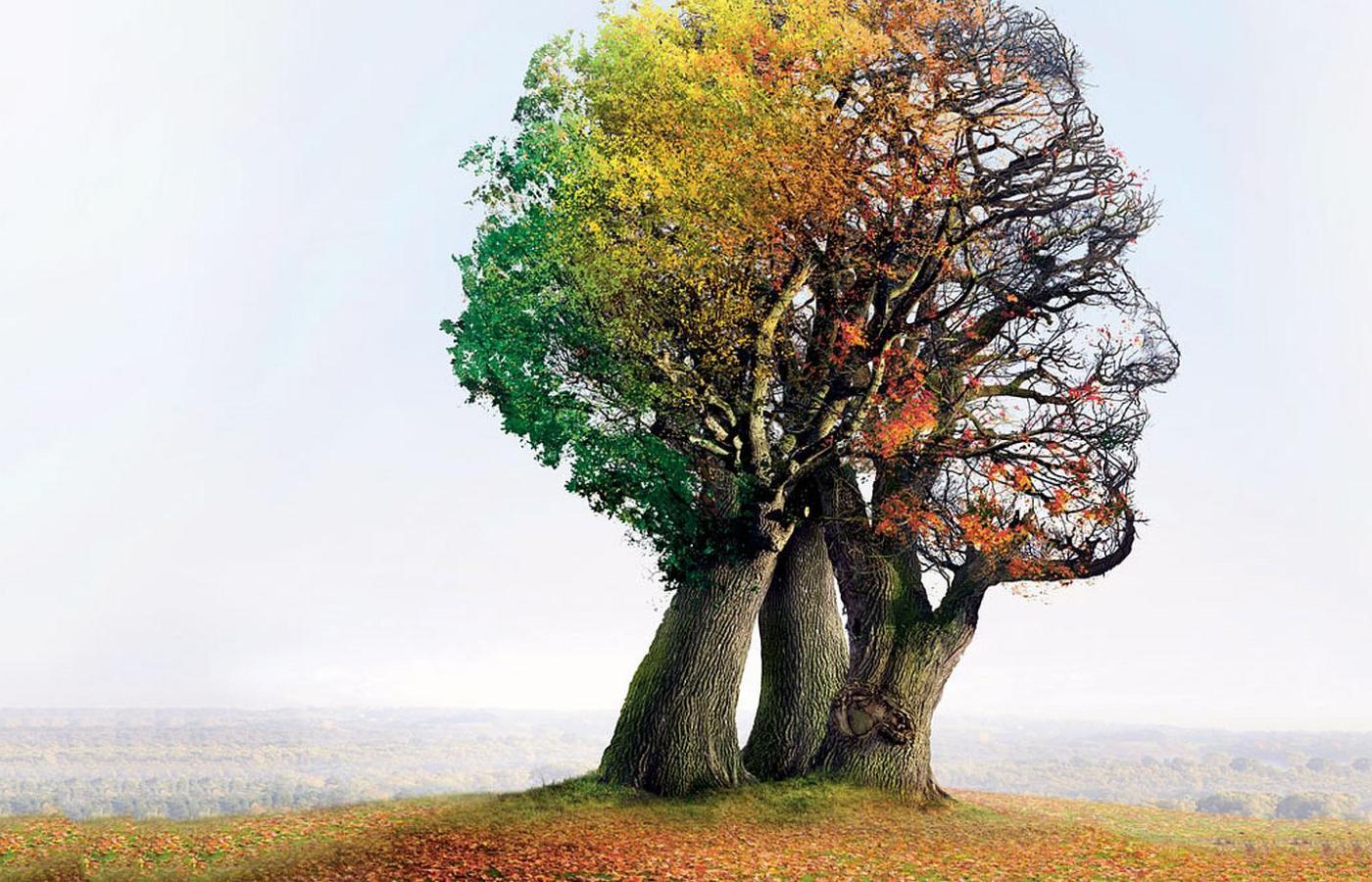 Alzheimer – przyczyny