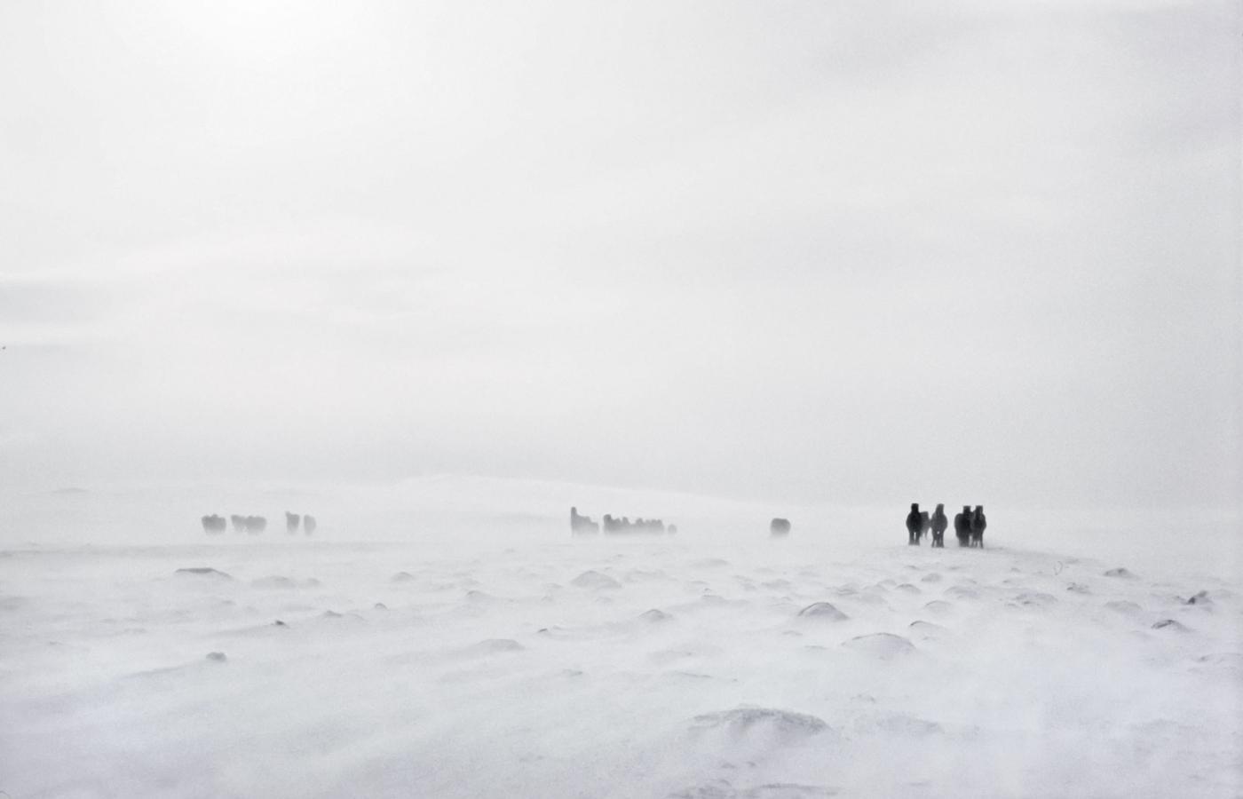 połączyć się w Islandii